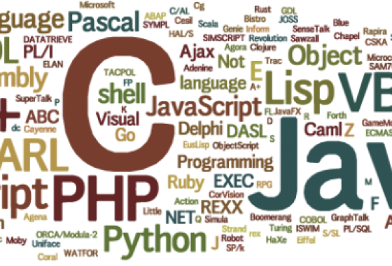 What are the top programming languages to build a website?
